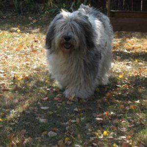 02-Październik-2011-010